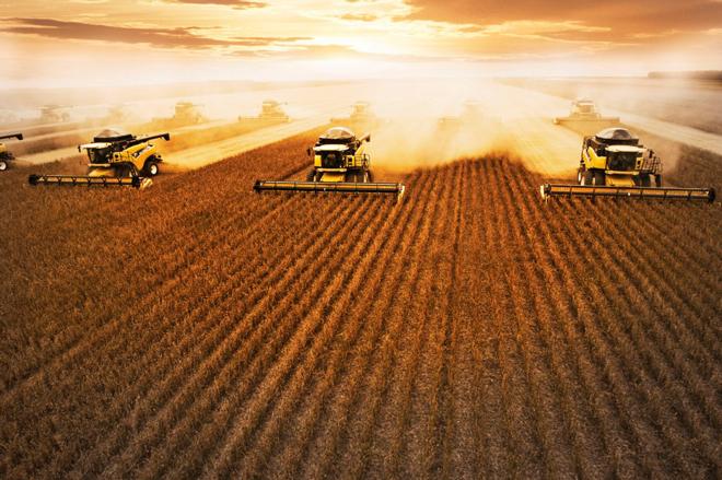 Produção de soja deve crescer 7,1% e chegar a 123,2 milhões de toneladas