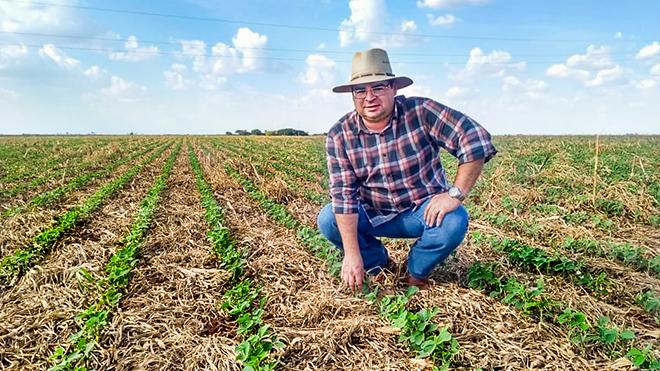 Produtor prioriza soja e faz investimento em cobertura de solo contra seca