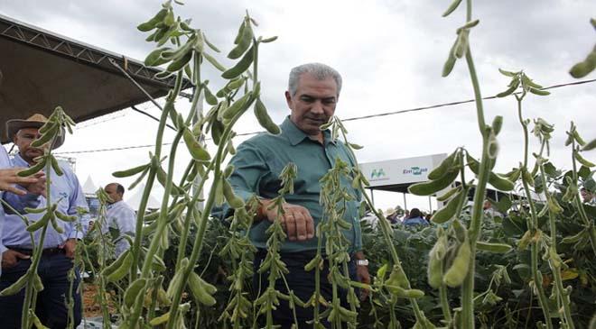 Showtec: investimento em pesquisa potencializa agronegócio e safra de soja deve superar 10 milhões de toneladas em MS