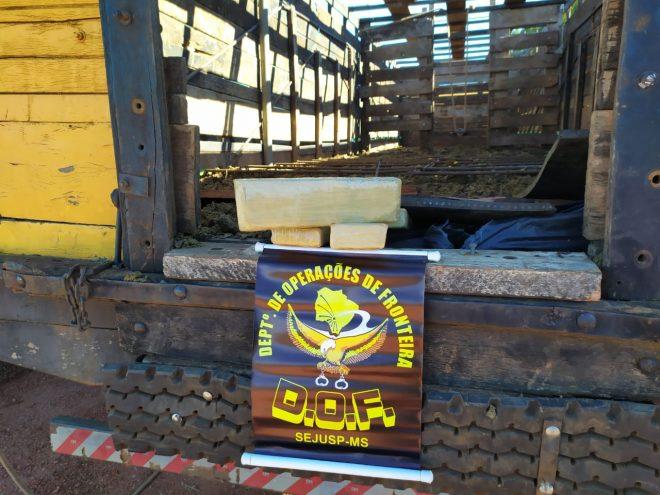 Três caminhões boiadeiros com mais de três toneladas de maconha foram apreendidos pelo DOF durante a Operação Hórus