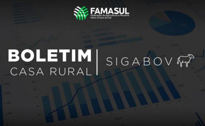 Famasul lança boletim com dados de inteligência e gestão territorial voltados a produtores da bovinocultura de corte