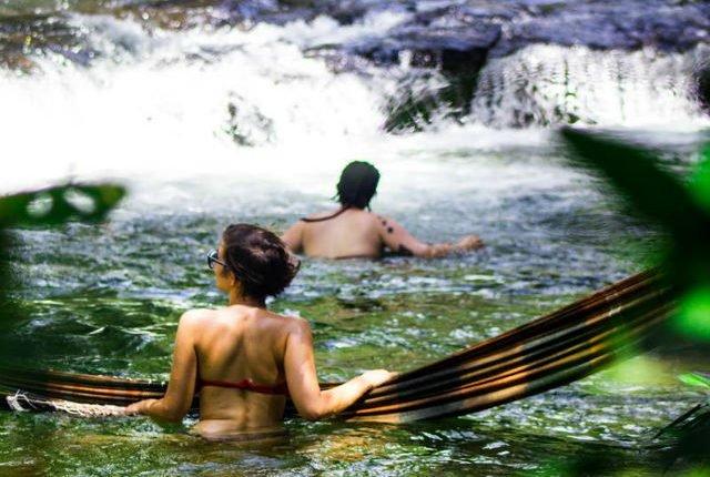 Fique atento: Queimadas elevam riscos de picadas de cobras em rios e cachoeiras de MS