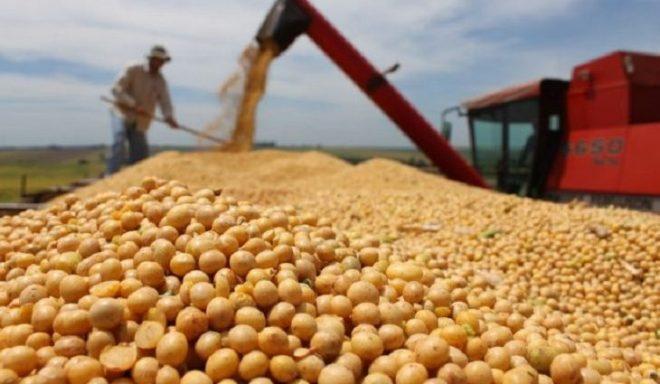 Exportações de MS somam 4,6 bilhões de dólares em setembro, com destaque para soja, celulose e açúcar