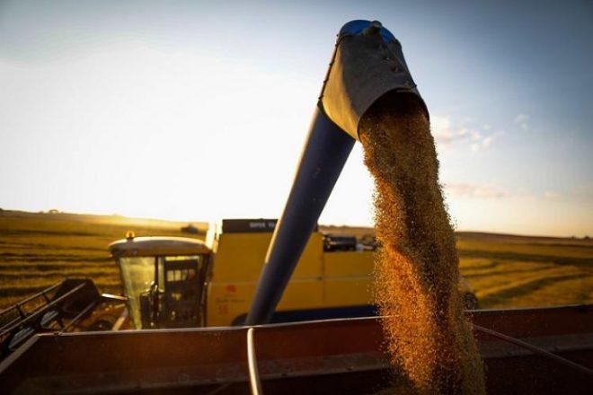 """Momento """"extraordinário"""" do agro e projeção de retomada econômica no Brasil serão abordados por especialista no MS Agro 2020"""