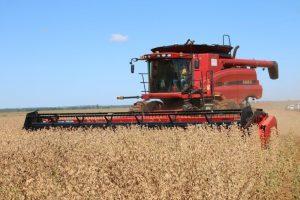 AgroCenário 2021 reúne autoridades do setor para discutir o futuro do agro sob a perspectiva político-econômica