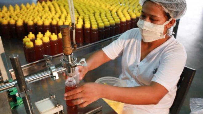 Programa Agro.BR busca 'maturidade exportadora' a pequenos e médios produtores