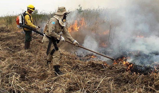 Governador Reinaldo Azambuja pleiteia FCO do Pantanal para recuperar prejuízos com queimadas