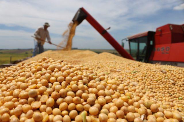Agropecuária tem maior geração de empregos dos últimos 10 anos