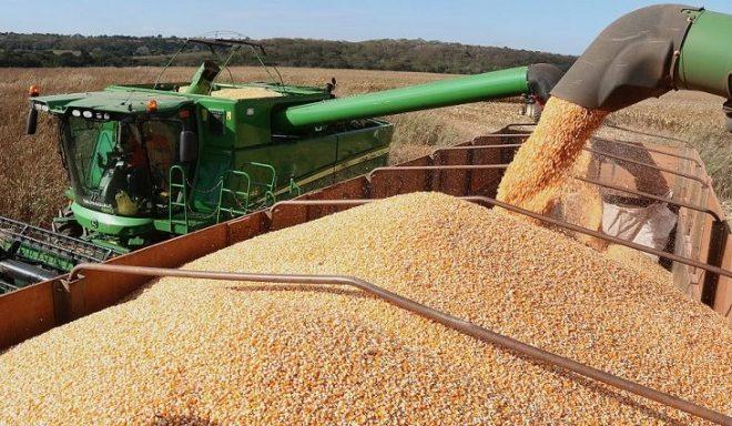 Colheita da soja entra na reta final e plantio do milho passa dos 90% em Mato Grosso do Sul