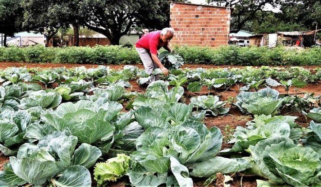 Governo vai auxiliar União na regularização de 30 mil títulos de terra da agricultura familiar em MS