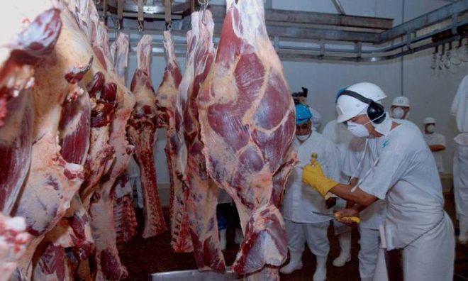 Mato Grosso do Sul: Vigilância apreende 389 kg de carne podre e de abate clandestino em açougue