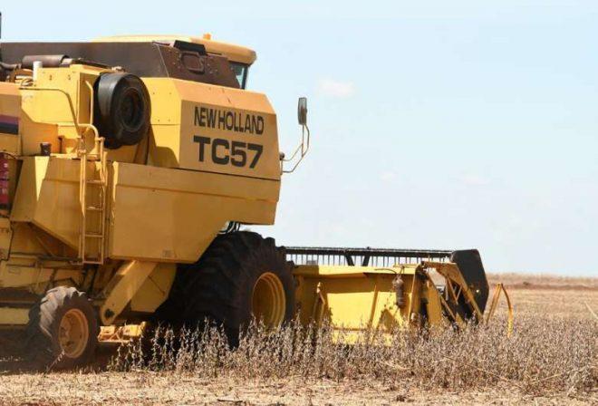 Colheita do milho começa a avançar e supera 80 mil hectares em MS