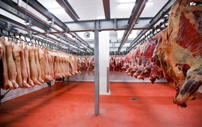 Agricultura confirma 2 casos de vaca louca e suspende exportação para a China