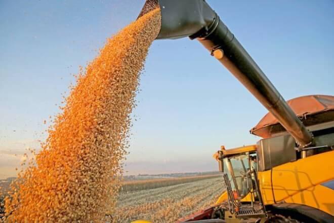 Nos 1.000 dias de Bolsonaro, governo não atrapalhou o agro, diz Daoud