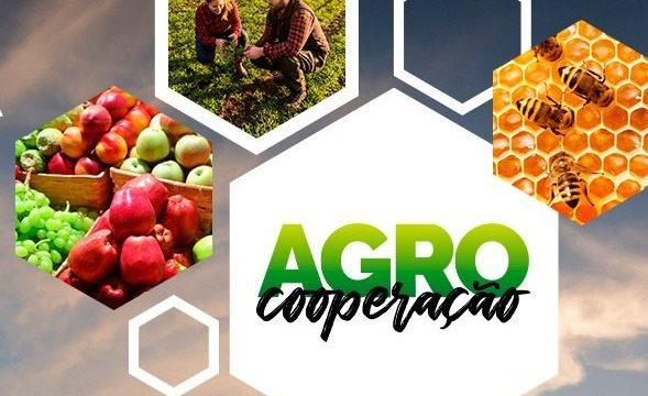 Agro Cooperação: Semagro e Iagro lançam campanha para produção de alimentos seguros
