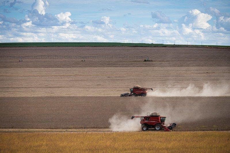 Competição com outros países causa imagem distorcida do agro brasileiro